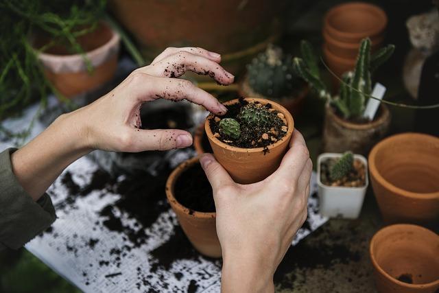 zahradničení.jpg